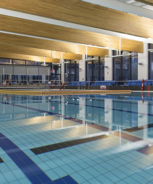 Swimming Pool Project Management : Projects abacus cost management